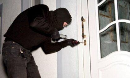 Furti in casa, sgominata la banda criminale