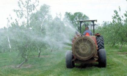 Trattamenti con i fitofarmaci, il Comune tutela i propri cittadini