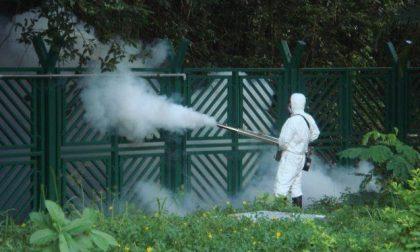 Lotta alle zanzare nessuna criticità a Belfiore