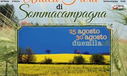 Sommacampagna, dal 25 agosto torna l'Antica Fiera