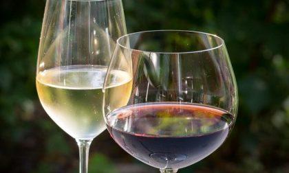 Torna Hostaria, il festival del Vino