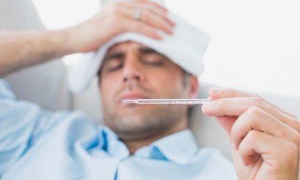 Influenza 2019 in Veneto salgono i decessi
