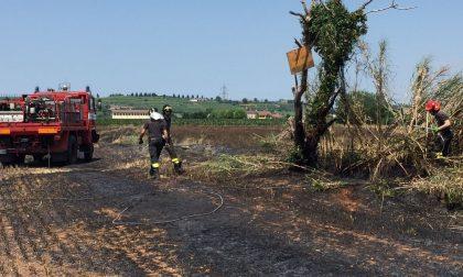 Incendio in via dei Colli, in fumo 300 quintali di orzo