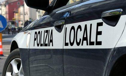 Verona, 38enne morso dal cane del vicino
