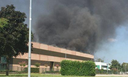 Incendio alla Vidori, rifiuti in fiamme