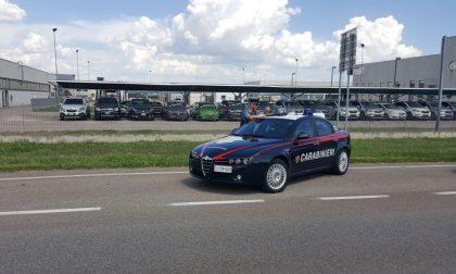 Prostituta a bordo, scatta la multa: 400 euro