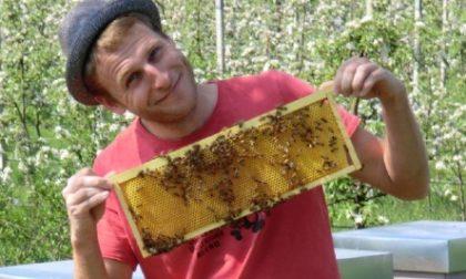 Leonardo e quel sogno: «La mia vita con le api»