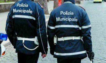 Mattinata impegnativa per la Polizia municipale a Verona