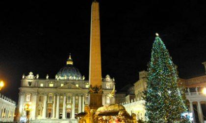 Le luci dell'abete di piazza San Pietro sono veronesi
