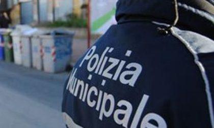 Offre droga a un agente in borghese, arrestato spacciatore