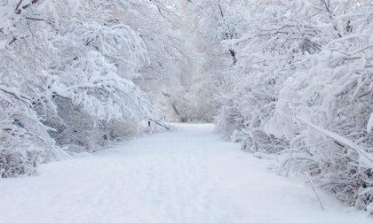 Meteo: arriva la neve anche in pianura