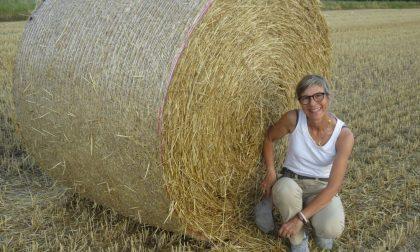 A Verona un'azienda agricola su cinque è condotta da donne