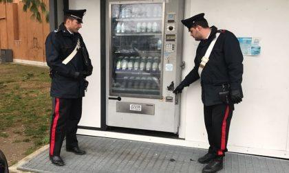Ruba le monete del latte: arrestato