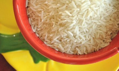 Allarme di Confagricoltura sull'importazione di riso indiano