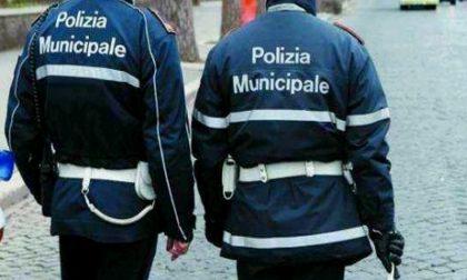 Danneggia tre veicoli e scappa, multato di 1.300 euro