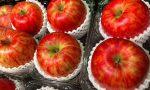 Frutta e verdura nelle scuole di Lonato