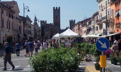 Villafranca in fiore lo spettacolo del centro cittadino FOTO