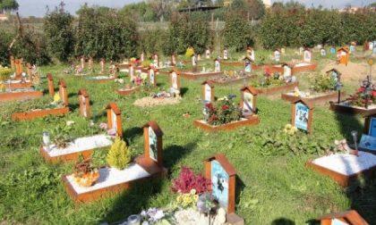 Seppellire animali in giardino in Veneto si potrà
