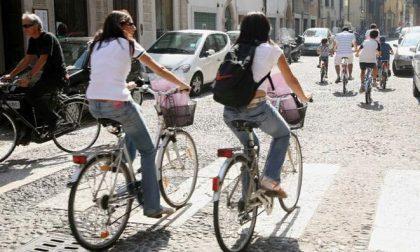 Mobility day a Verona: musei gratuiti, muralonga e tanto sport