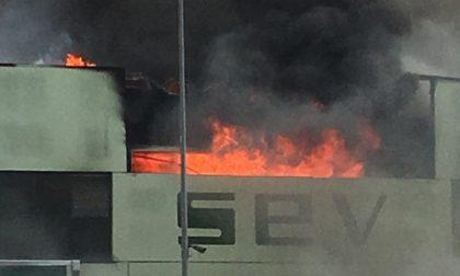 Incendio Sev Povegliano ecco le analisi dell'Arpav