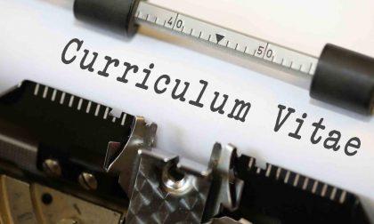 Curriculum vitae le dritte per crearne uno a Bovolone