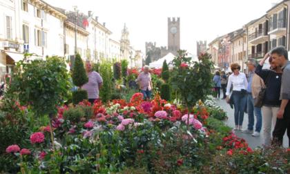 Villafranca in fiore torna anche questa primavera