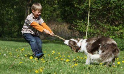 Cani e bambini come approcciarsi con il proprio amico a quattro zampe
