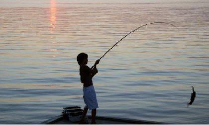 Gara di pesca alla sarda | Lazise