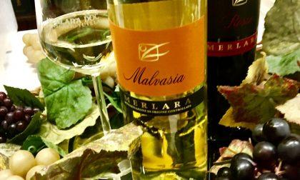 Merlara Doc premiato al Veneto Wine top