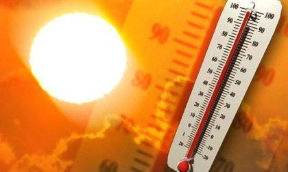 Allerta caldo: attesi fino a 37 gradi, attivati i numeri di emergenza