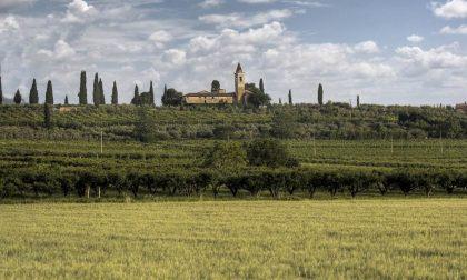 Madonna del Monte luogo del cuore più votato in Veneto