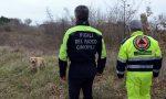 Ritrovata donna scomparsa in Valpolicella