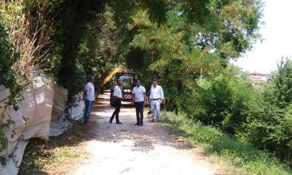 Da Catena beach alla diga del Chievo: grandi pulizie sul percorso pedonale
