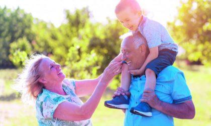 Festa dei nonni attesi oltre 240 bambini alle Golosine