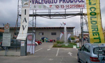 """XIII edizione di """"Valeggio Produce"""", ecco date e programma ufficiale"""