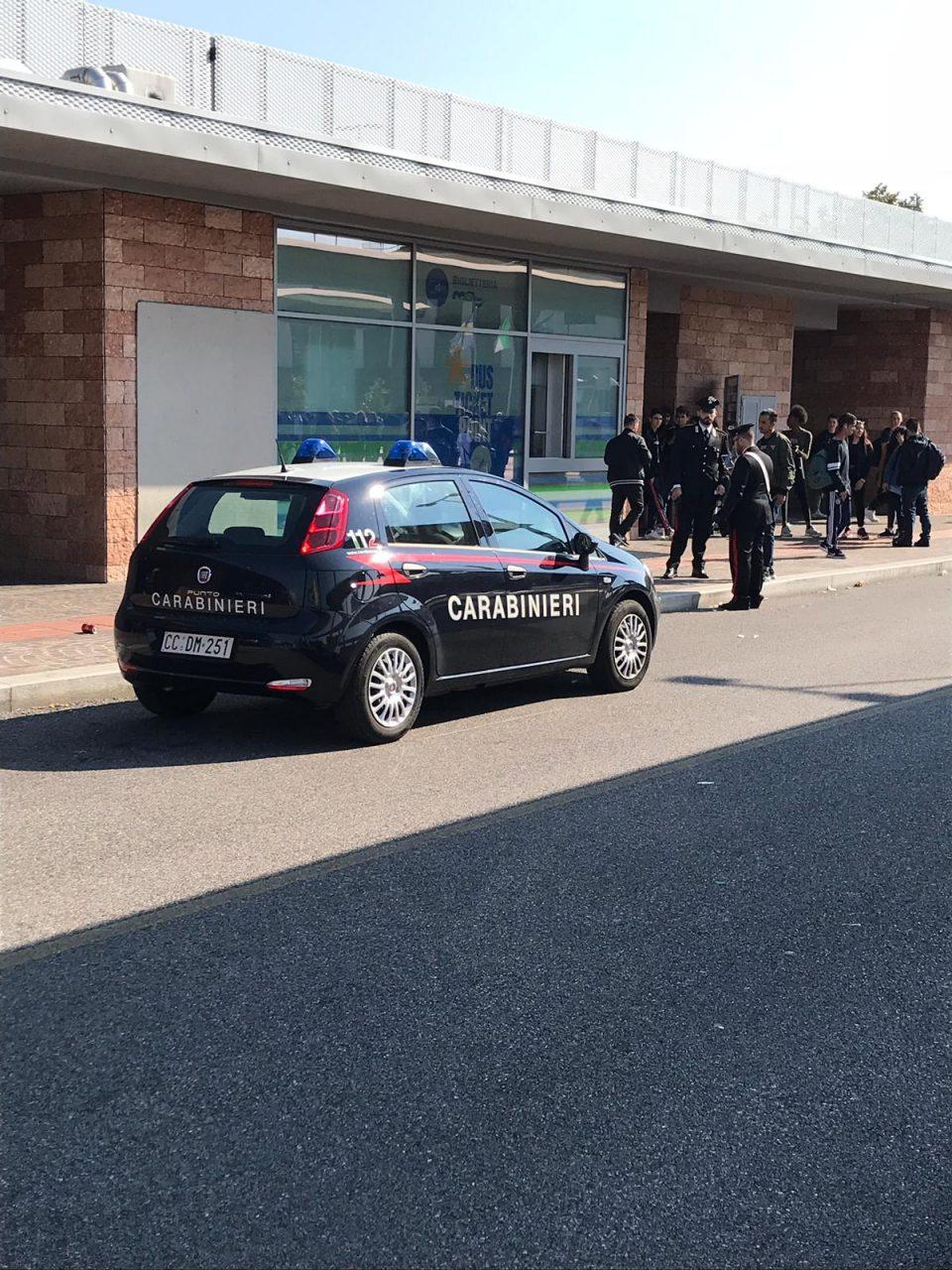 Cani antidroga sui bus veronesi, maxi operazione dei carabinieri contro lo spaccio