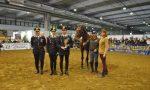 Grande successo per i cavalli maremmani dei carabinieri