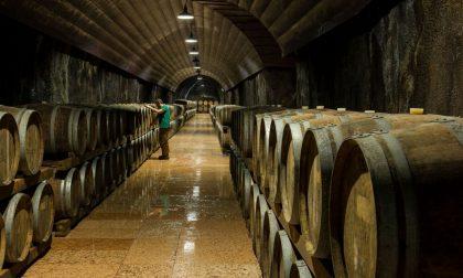 Cantina di Soave: in 3 anni riciclati 62000 kg di supporti per etichette