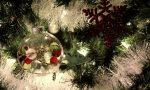 Colognola ai Colli, acceso l'albero di Natale della casa di riposo VIDEO