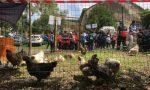 Mobility Day, per l'ultimo appuntamento arrivano in città le fattorie didattiche
