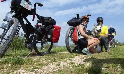 In viaggio con il proprio cane esperienza unica e indimenticabile