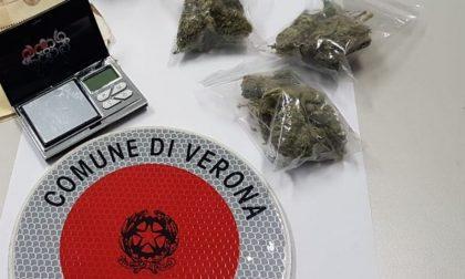 Vende droga all'agente in borghese, arrestato 26enne