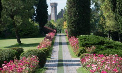 Al Parco Sigurtà premiate le opere d'arte della mostra Florart