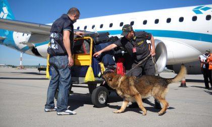 Arrestati quattro trafficanti di stupefacenti all'aereoporto Catullo: avevano ingerito 350 ovuli