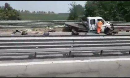 Transpolesana chiusa: incidente tra mezzi pesanti