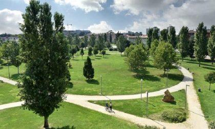 """Verona si scopre verde, in città una """"foresta"""" di 60 mila alberi"""