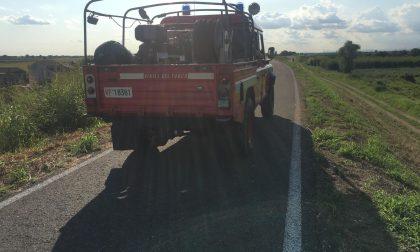 Bracciante rumeno scomparso a Ronco: in corso le ricerche