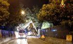 Veneto attiva procedura ristoro danni per le zone veronesi colpite dal maltempo