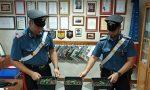 Coltivava marijuana in casa: arrestato 57enne di Zevio
