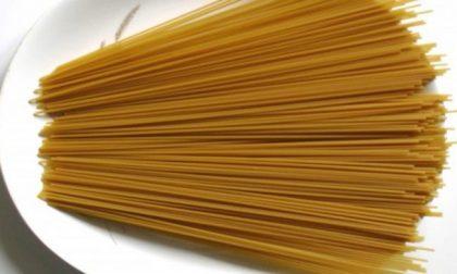 In Europa è allerta per la pasta italiana contaminata da insetti